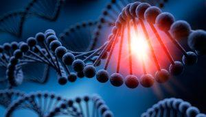 تمایل به کارآفرینی ژنتیکی است